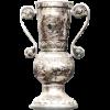 匈牙利杯冠军