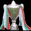 保加利亚杯冠军