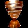 法国联赛杯冠军